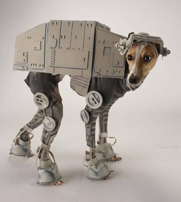 Star Wars Kostüm für Hunde