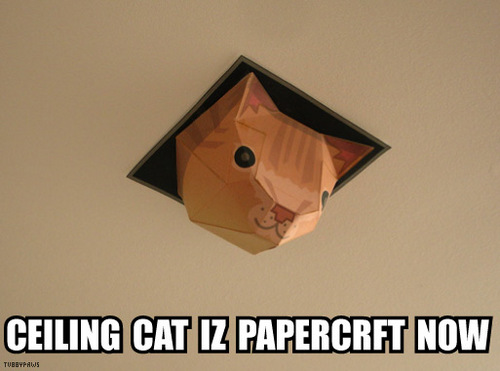 Papercraft Ceiling Cat Boing Boing
