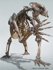 Prehistoric Bears | RM.