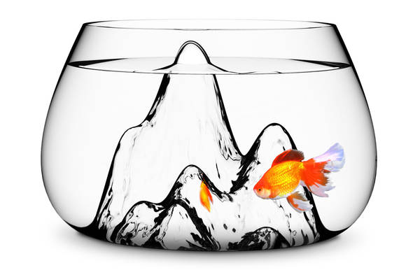 Goldfish bowl with blown glass mountains boing boing for Large glass fish bowl