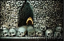 Photos Of Bone Chapel In Czech Republic Boing Boing