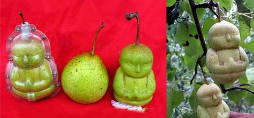 Груши в виде Будды