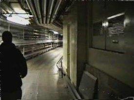 Disney World S Underground Tunnels Boing Boing